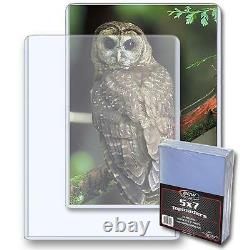 1 Case of 500 BCW Brand 5 x 7 Topload Postcard Photo Holders Storage Protection